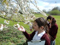 Geography fieldwork examines our new Junior School land